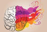 بررسی 10 تفاوت اصلی بین مغز زنان و مردان