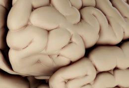 اشتباهات مختلف در امور روزمره هشداری برای آلزایمر
