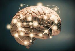 تاثیرات منفی حمله صرع بر ایجاد آلزایمر
