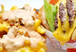 رژیم غذایی کم چرب باعث کاهش سرطان لوزالمعده