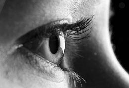 اطلاعاتی در خصوص مگس پران چشم و درمان آن