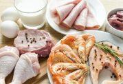 پیامدهای کمبود پروتئین در بدن