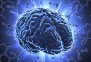 دلیل عدم انفجار مغز در مواقع اوج فعالیت
