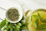 نوشیدن بیش از حد چای سبز مفید است یا مضر؟