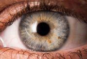 آنچه رنگ و فرم چشم درباره سلامت شما می گوید