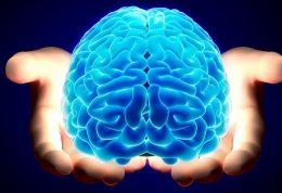مغز انسان توانایی مطلق ندارد تا به این سن نرسد