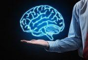 آیا مصرف سالاد باعث جوان ماندن مغز می شود؟