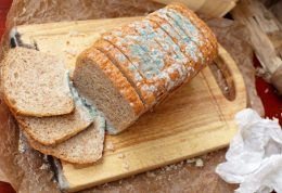 مصرف نان کپک زده موجب ابتلا به سرطان می شود