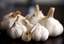 مصرف سیر عامل اصلی درمان عفونت های تنفسی