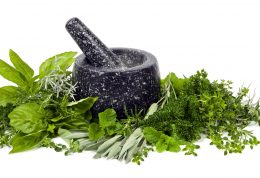 با گیاهان دارویی رشد پروستات را متوقف کنید