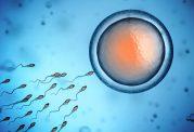 باردار شدن پس از مدت طولانی پیشگیری از آن