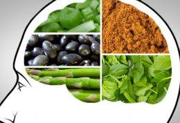 5 ماده خوراکی برای بهبود حافظه