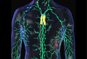 یافته های جدید برای مقابله با سرطان لنفوم
