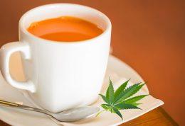 اشتباه بزرگ راجع به چای های لاغری