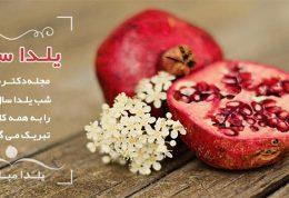 یلدا سلام | جشن یلدای امسال با دکتر سلام 1396