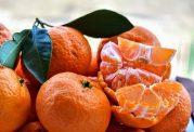 خصوصیات مختلف نارنگی