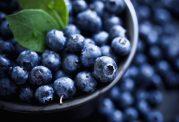 انواع و اقسام ویتامین ها و توصیه های مهم در مورد آن ها