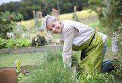 مزایای باغبانی کردن در سنین بالا