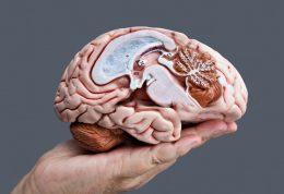 کاربرد صداها برای مقابله با آلزایمر