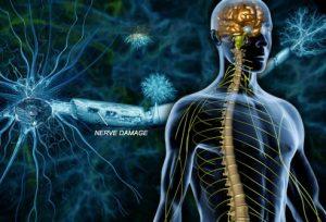 تحقیق دکتر تارات بر آنتروپی مبتلایان به بیماری MS
