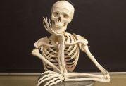 اطلاعاتی که باید درباره استخوان ها بدانید