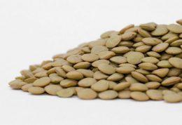 آشنایی با مواد غذایی انرژی ساز برای بدن