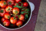 از فریز کردن این سبزیجات پرهیز کنید