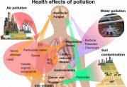 آلودگی هوا زمینه ایجاد بیماریهای عفونی را فراهم میکند