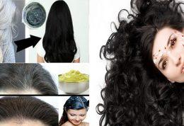 5 درمان گیاهی برای رفع ریزش مو
