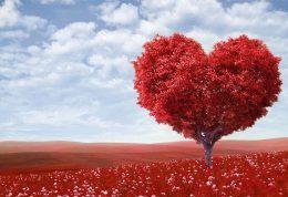سرنوشت عشقهای ولنتیانی