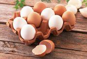 آشنایی با منابع سرشار پروتئین
