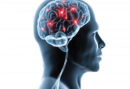 خطر ابتلا به اختلال حواس در اثر کم تحرکی