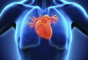 صدای آژیر ریسک سکته قلبی را افزایش میدهد
