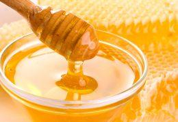 تولید پودر عسل در کشور