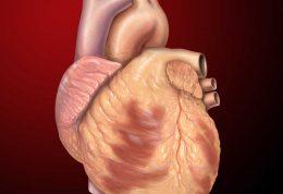 عمل جراحی قلب باز چیست و چگونه انجام می شود؟