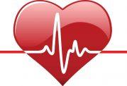 قلب سالم را در آشپزخانه ی خود بجویید