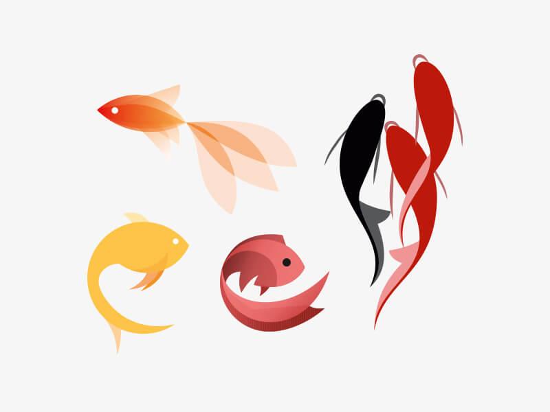 آیا ماهی قرمز موجب ابتلای شما به بیماری پوستی خواهد شد؟