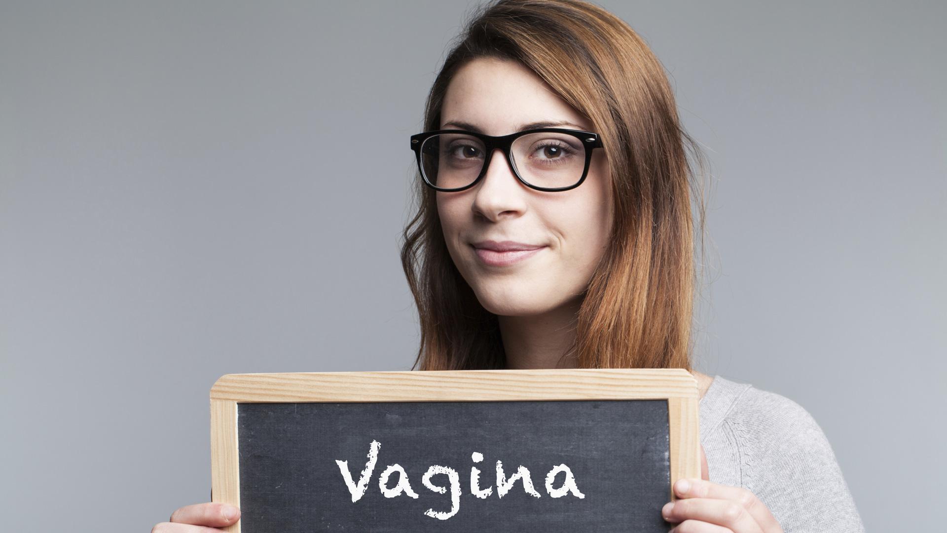 بررسی بخش های تشکیل دهنده واژن