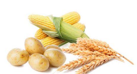 نشاسته برای قطع پریود چه تاثیری دارد ؟ + رژیم غذایی مخصوص