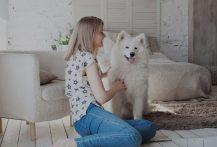 فواید امگا 3 برای سگ ها