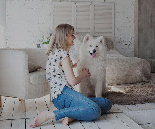 مصرف امگا 3 برای سگ ها