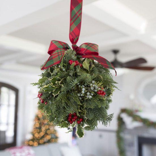 22875 1 min 1 e1545804578293 - گیاه دارواش (Mistletoe)؛ 6 فایده شگفت انگیز گیاه دارواش
