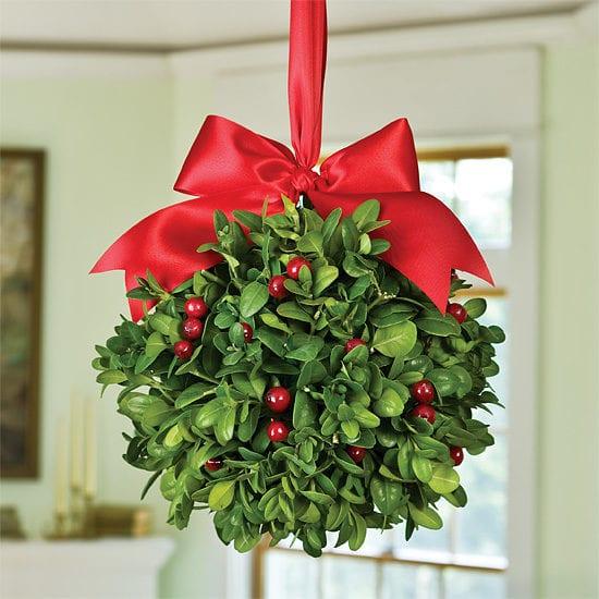 4c0e00023 env2 lg 550x550 min - گیاه دارواش (Mistletoe)؛ 6 فایده شگفت انگیز گیاه دارواش