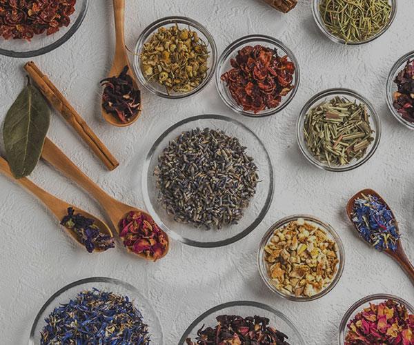 افزایش سلامتی با بهترین گیاهان و غذاهای سرشار از مواد مغذی