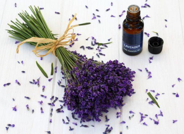 ۱۲ روش برای استفاده از اسطوخودوس در فنگ شویی