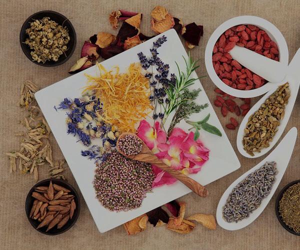 فیتوتراپی (گیاه درمانی) چیست و چه فوایدی دارد؟