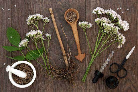 فواید و عوارض مصرف ریشه سنبل الطیب