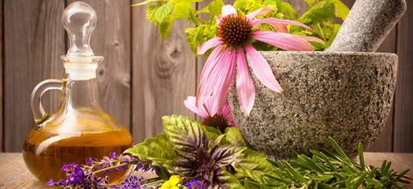 فیتوتراپی (گیاه درمانی)