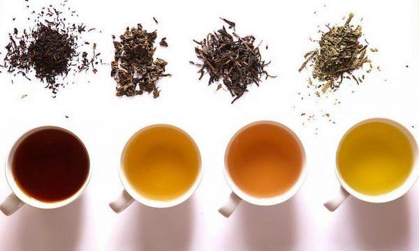 چای سیلان؛ ۹ مورد از فواید چای سیلان + نحوه دم کردن
