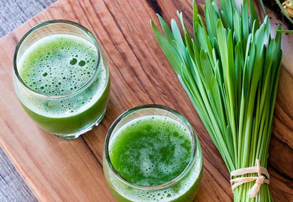 ۵ فایده سبزه گندم برای سلامتی